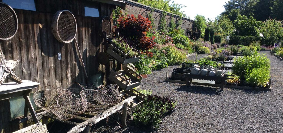 plant nursery north yorkshire garden centre